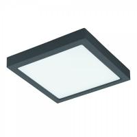 ARGOLIS 96495, Plafoniera exterior LED 300X300 antracit